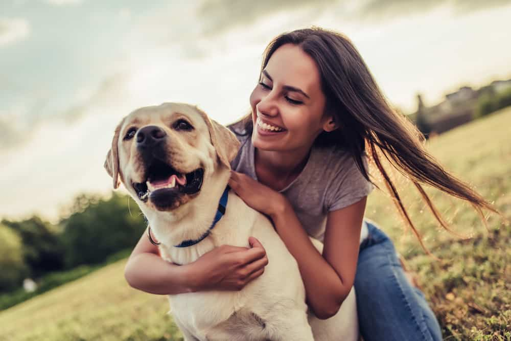 CBD For Pets: What You Need To Know